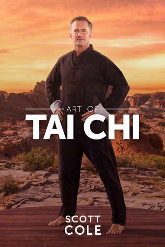 Cyberobics - Art Of Tai Chi