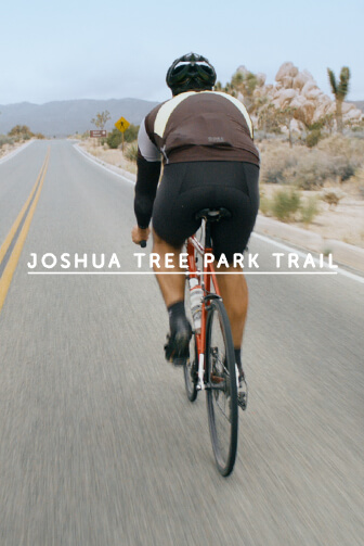 Joshua Tree Park Trail
